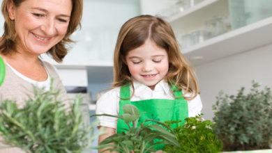 Guía para hacer un huerto con tus hijos durante el verano